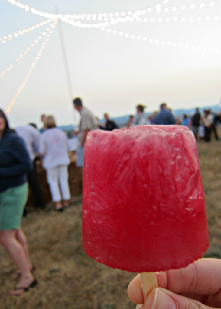 Wine popsicles at Counter Culture 2012