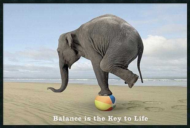balance-is-the-key-to-life