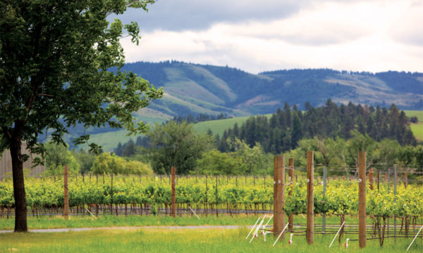 Photo credit: Visit Walla Walla